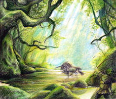 forest of life by orangeycow
