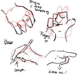 Anthro hands stude 1 by skailak
