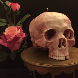 Skull Candle by catacombculture