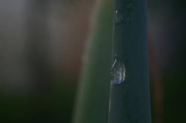 Crawling Droplet v1 by Zomara0292