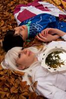 Leaves by Su-rine