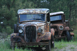 Forest Trucks by FrancesColt