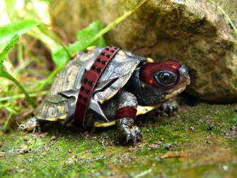 turtle ninja by ferchito1w08