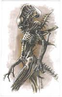 Alien sketch by cuccadesign