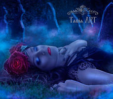 Red Roses by TaniaART