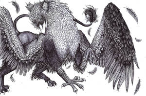 Gryphon by Dracilla112