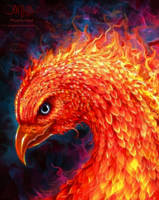 Phoenix Head by amorphisss