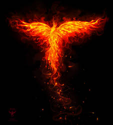 Phoenix orange flames ver by amorphisss
