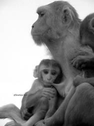 motherhood by xanthousis