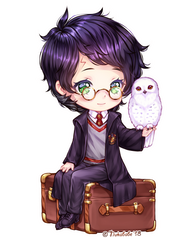 [+Video] Just Harry and Hedwig by Nukababe