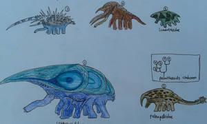 Peltatheroid diversity: 5 main groups by paleosir