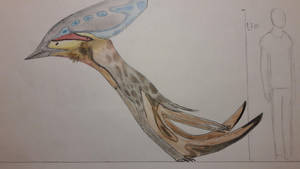 Sea runner? More like a land runner. by paleosir