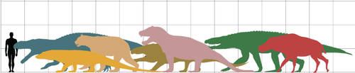 Behold, the largest non-dinosaurian land predators by paleosir
