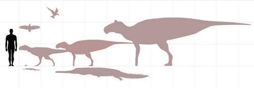 Maastricht formation non-marine fauna by paleosir