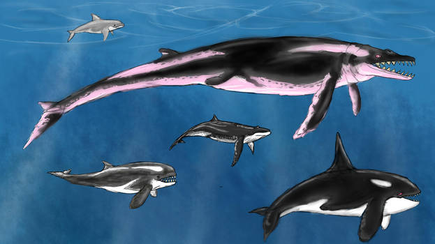 Archaeocetes and Paleowhales by Enneigard
