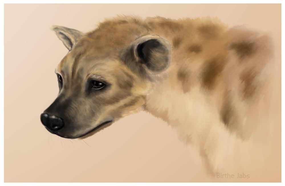 Hyena by Sinceredir