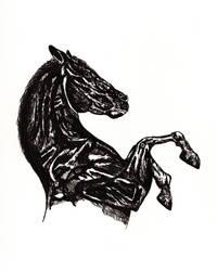Black Horse by Incredzible