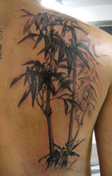 bamboo tattoo by farrensquare