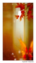 Liquid Gold by missjserenity