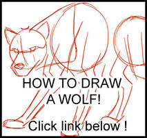 How to Draw a Wolf Tutorial by lady-cybercat