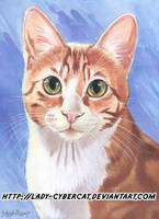 Orange Cat Pet Portrait by lady-cybercat