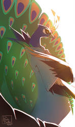 Mr Peacock by RubyFeather