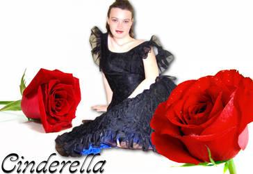 : : cinderella : : by EasyCom