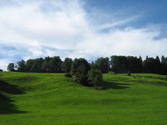 green pastures by EasyCom