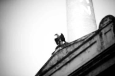 London Eagle by EasyCom