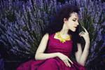 Lavender dreams by NataliaCiobanu