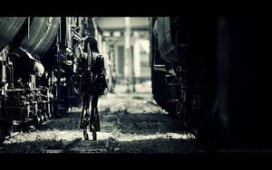 trains by MichalTokarczuk