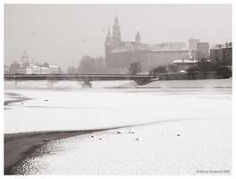 Cracow - frozen river by MichalTokarczuk