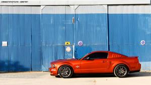 Mustang by Attila-Le-Ain