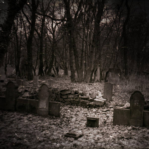 abandoned cemetery .. by PatiMakowska