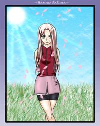 Shippuuden Sakura - Long Hair by xXSeiren-HimeXx
