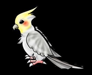 :: Cockatiel by crystalmew