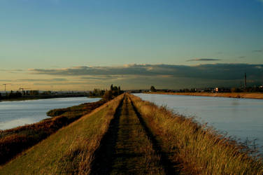 The road to civilization by navamalika