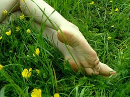 Buttercup Feet by Foxy-Feet