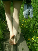 Walking Home by Foxy-Feet