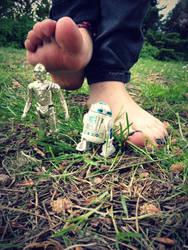 Star Wars Trample by Foxy-Feet
