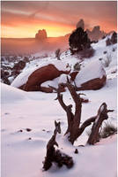 Snow, Fog, and Arches by tourofnature