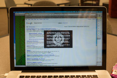 Kernel Panic on Snow Leopard by conbot