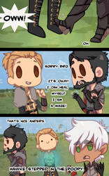 Dragonage :: Hawke stepped in the poopy by Arkay9