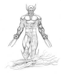 Dark Wolverine by florencuevas