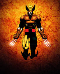 Wolverine with color by florencuevas