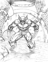 Wolverine in the sewers by florencuevas