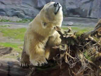 Polar Bear by Flohquaste