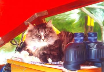 Ship's Cat by Flohquaste