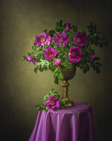 Wild roses by Daykiney