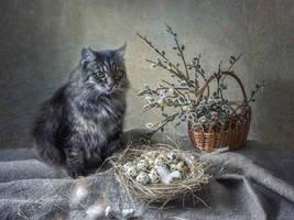 March 1 - World Cat Day by Daykiney